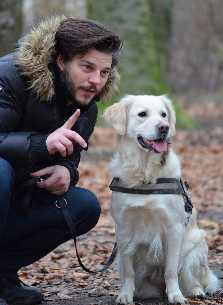 Impulse Dog Training
